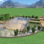 Biopiscine Naturpool Biopool Garden Verona Vicenza Mantova Brescia Parma