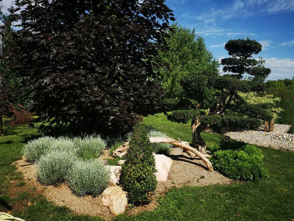 Giardini Biopool Garden Bonsai