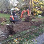 manutenzione giardini 6