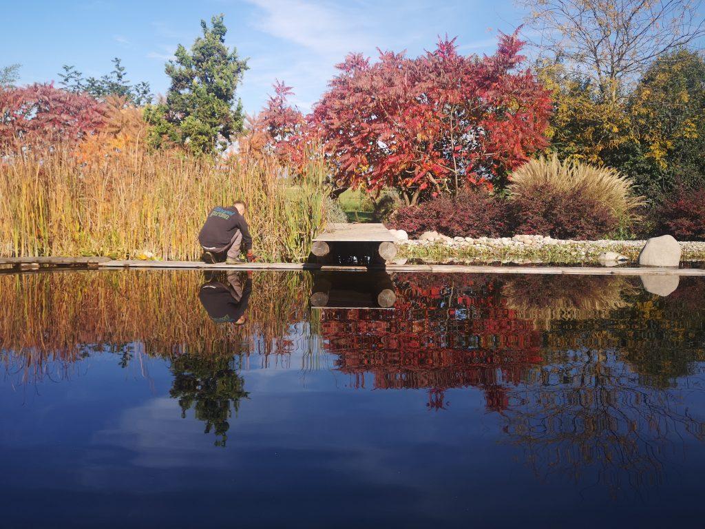 Potatura Biopiscina Biopool Garden