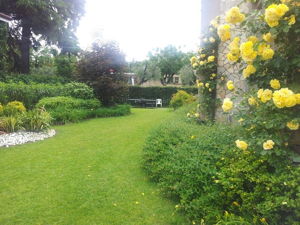 progettazione giardini manutenzione verde verona 1