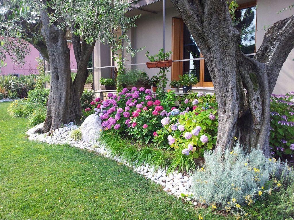 progettazione giardini manutenzione verde verona 7
