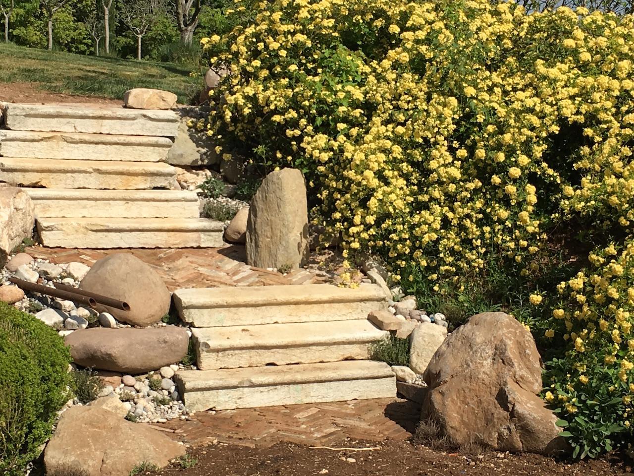 Realizzazione giardino gradinate e scale costruzione biopiscine e manutenzione verde - Scale per giardini ...