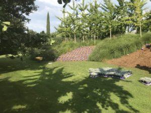 Realizzazione Scarpata Giardino Veneto