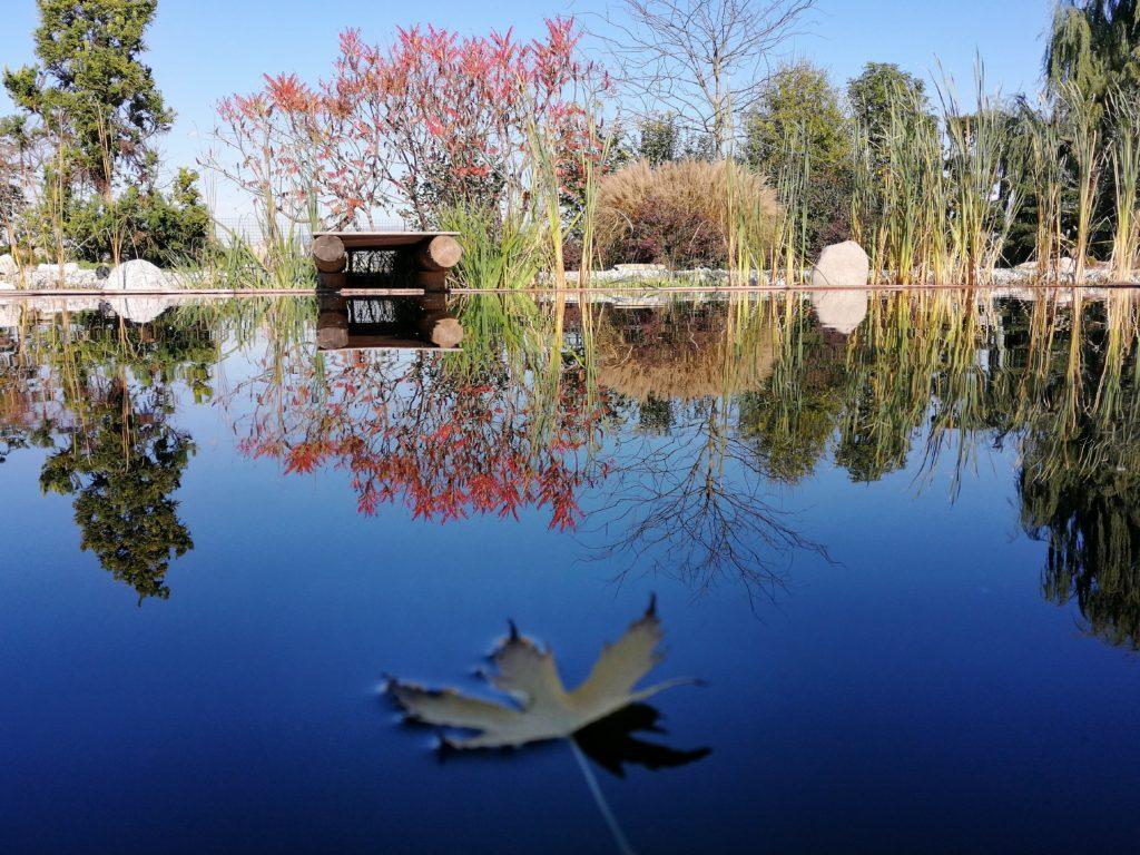 Biopiscina Biopool Garden Verona