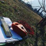 Costruzioni Su Misura Biopiscine Biolaghi Veneto