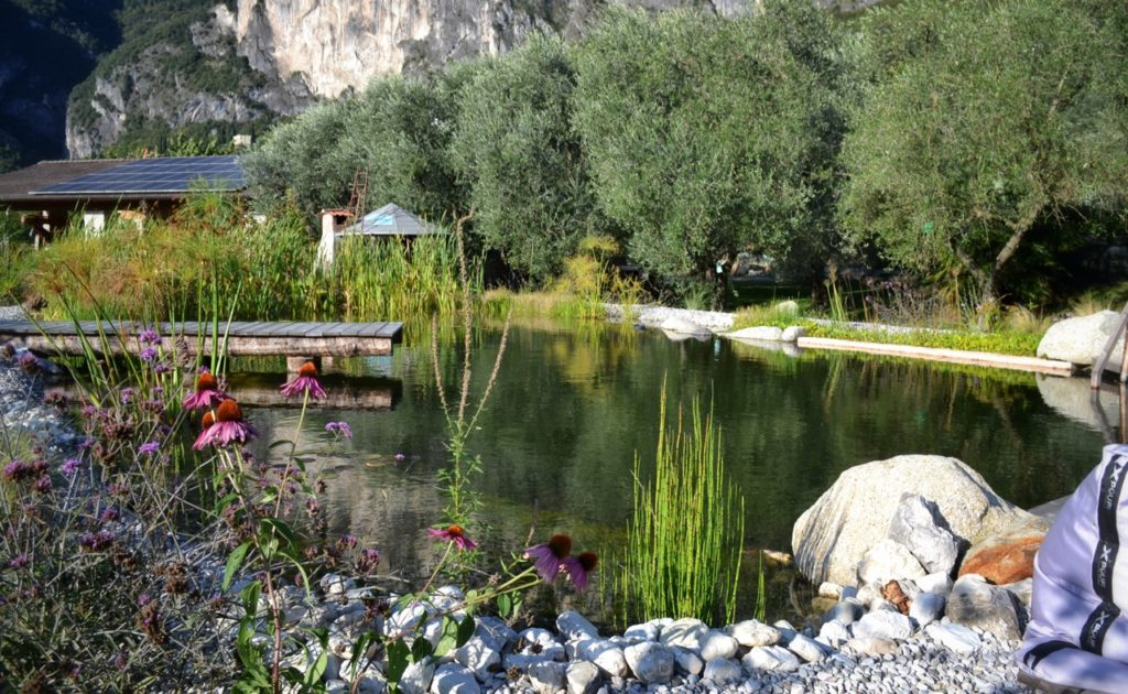 Biolago Lago Di Garda Agriturismo Riva D Garda Dsc 0664 1 01