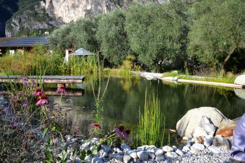 Gallery Biolago Agriturismo Trentino Garda