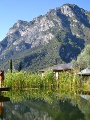 Gallery Biolago Agriturismo Trentino Lago Di Garda