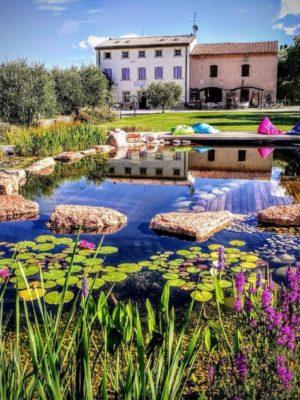 Gallery Biolago Agriturismo Verona