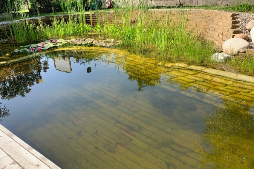 Gallery Biolago Agriturismo Verona Lago Di Garda