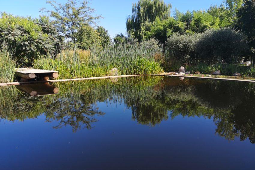 Gallery Biolago Naturale Agriturismo Trentino Lago Di Garda