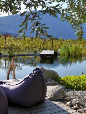 Gallery Biopiscina Naturale Agriturismo Verona Lago Di Garda