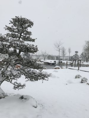 Biopiscina Inverno Veneto