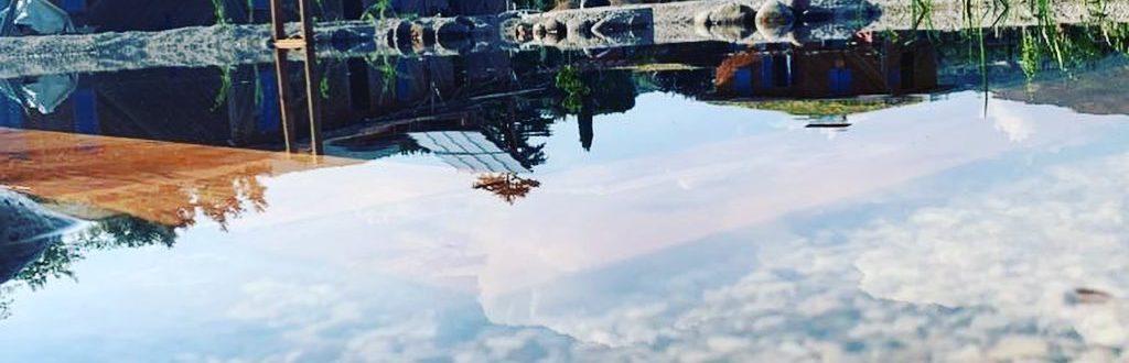 Alcuni Dettagli Ancora E La Nuova Biopiscina è Pronta #acqua
