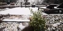 L'immagine può contenere: albero, pianta, spazio all'aperto, natura e acqua