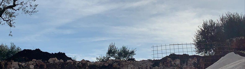 Work In Progress Under The Sun #puglia #veronapiscinenaturali #biopool #giardini